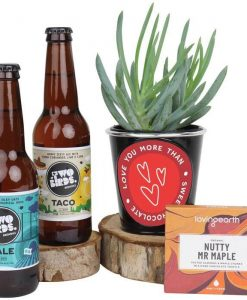 Valentine Succulent & Craft Beer Hamper
