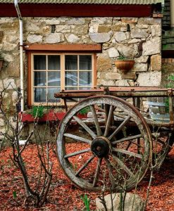 Hahndorf and Hills Gourmet Food and Wine Tour
