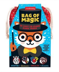Mudpuppy Bag of Magic Set