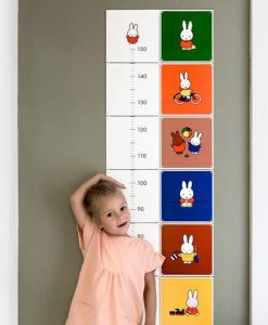 Miffy Growth Chart By IXXI