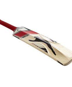 V800 Ultimate Cricket Bat