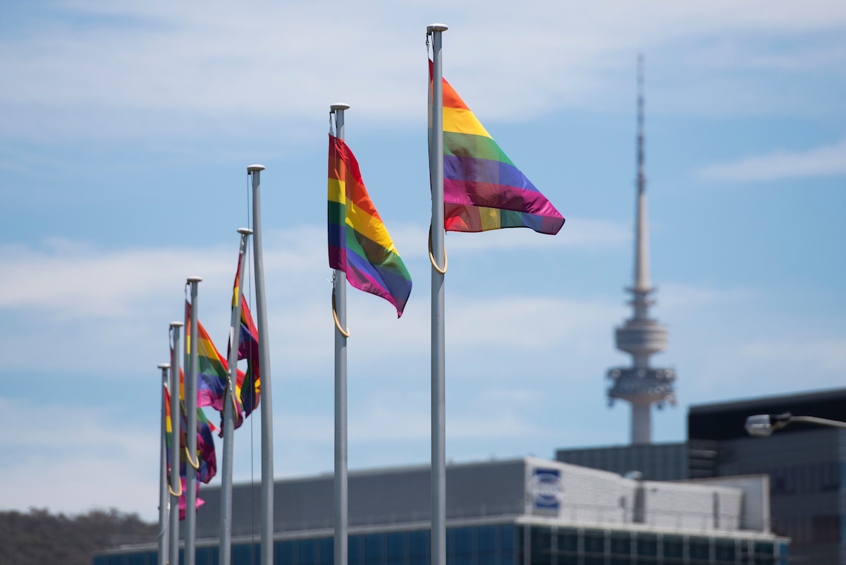 Black Mountain Tower and rainbow flags