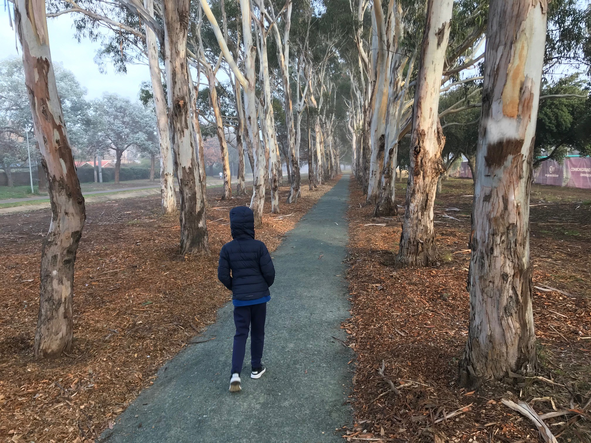 A young person walking in the fog on the new path