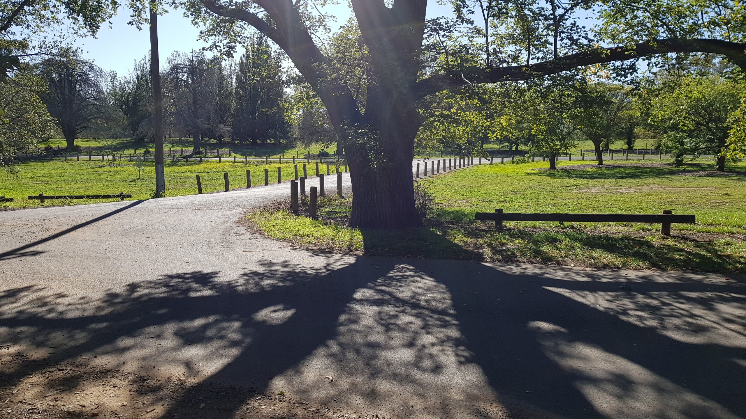 Road 3 - Laneway to Yarralumla Nursery looking towards Weston Park Road