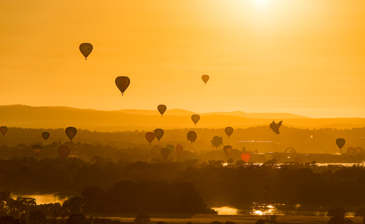 Balloons in the air over Canberra at dawn