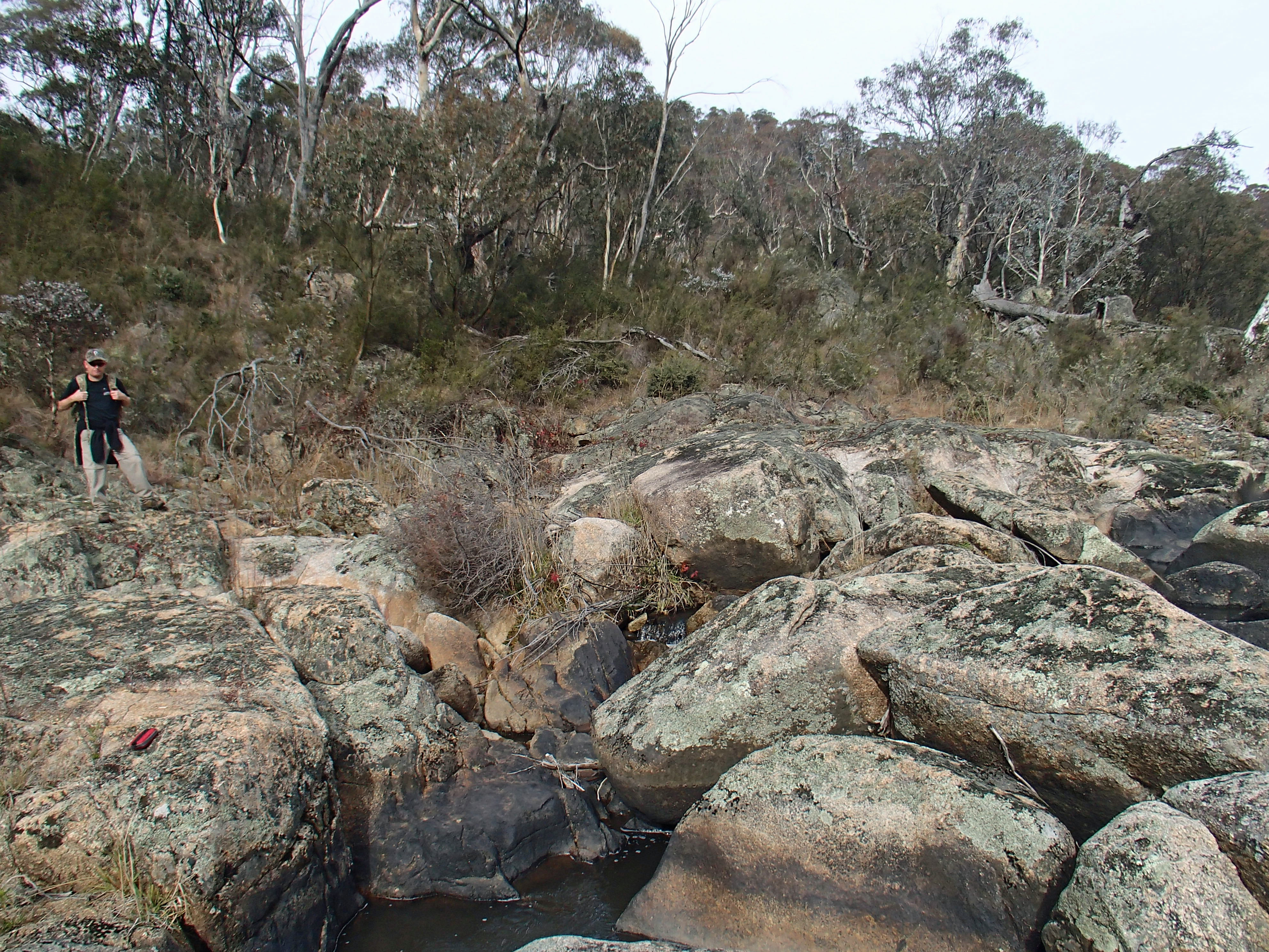 Spotted-tailed Quolls use rock slabs like these as latrine sites