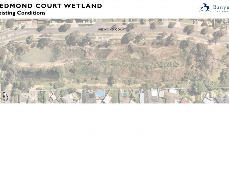 Redmond Crt Wetlands Reserve existing conditions