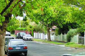 Cars parked in green, leafy street
