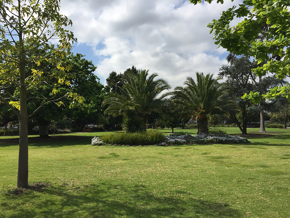 garden beds and mature trees
