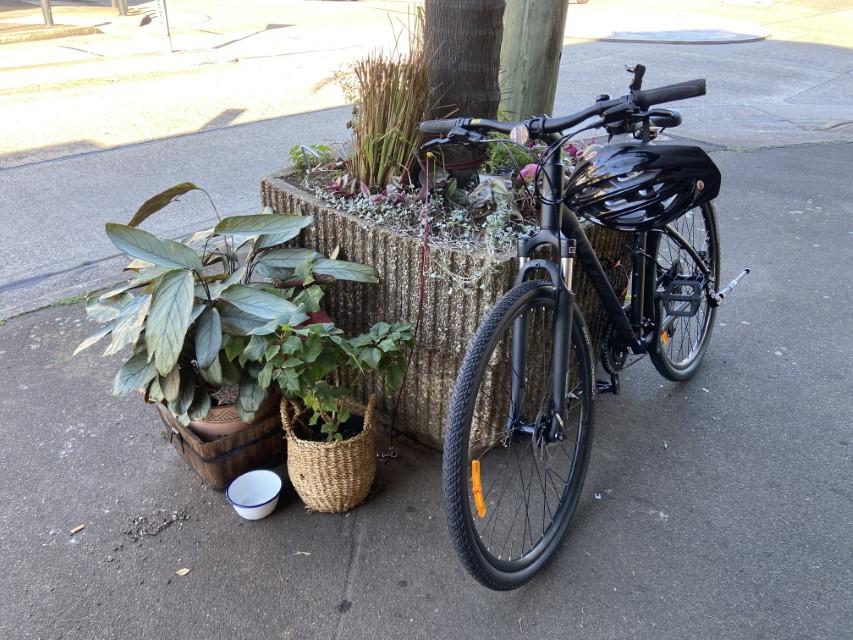 bike in rodd point