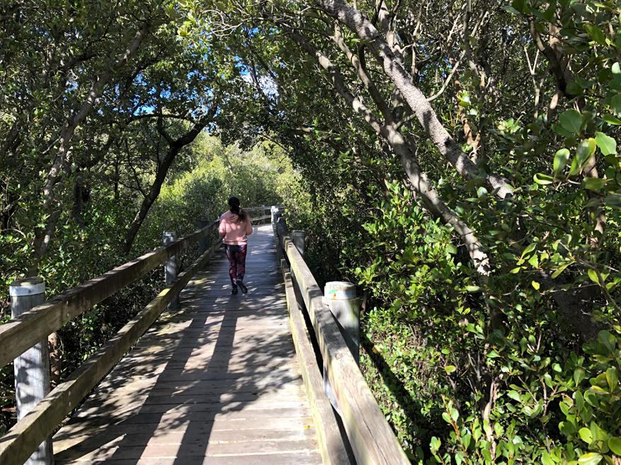 Salt Pan Creek Walkway