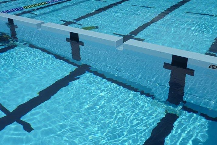 Roselands: swim wall inspiration