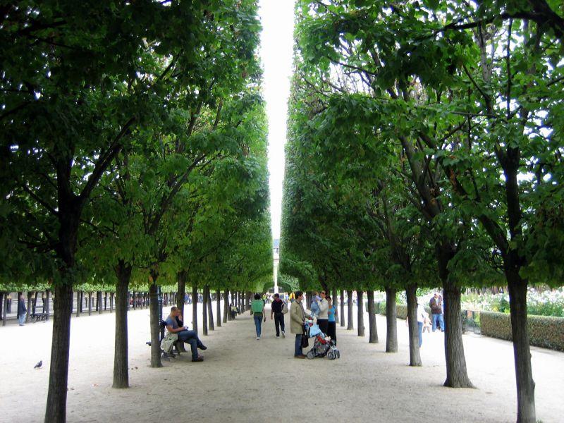 Park inspiration