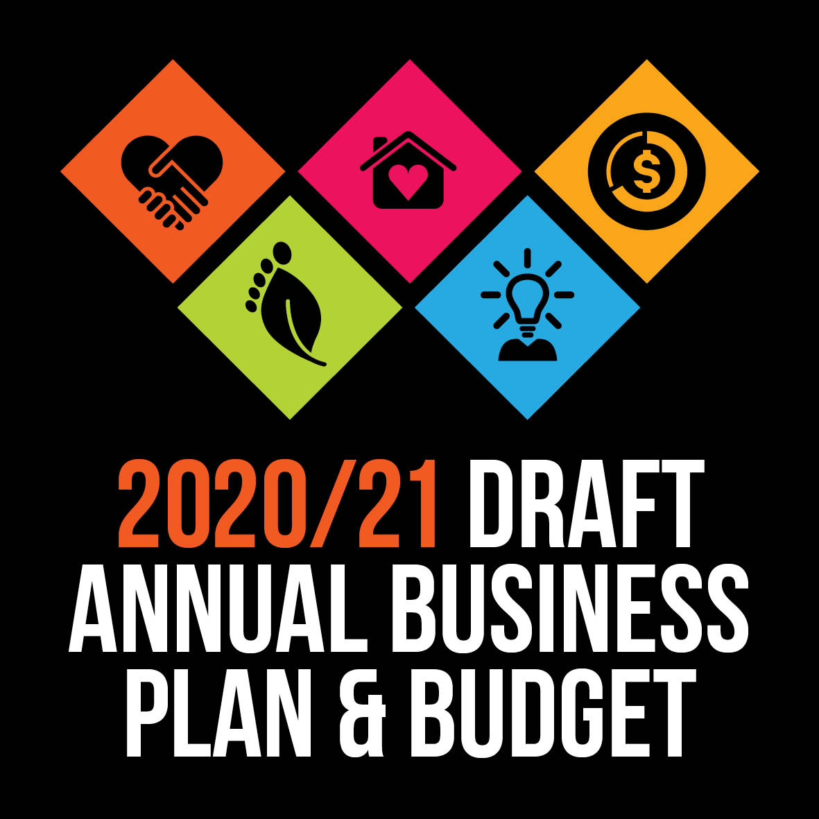 Annual Business Plan 2020/21