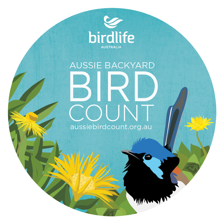 Take part in the Aussie Backyard Bird Count