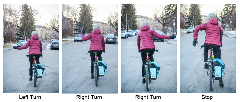 Cyclist from the back in four images showing all permitted hand signals with proposed change. Left arm extended left still signals left turn, left arm with bent elbow and hand pointing up signals a right turn and left hand with elbow bend and hand pointed