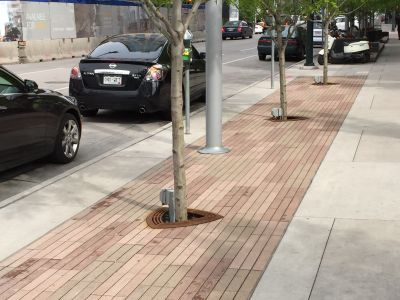 Permeable pavers and street trees
