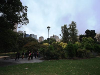 Treasury Gardens wetland