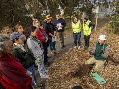 Planting demonstration
