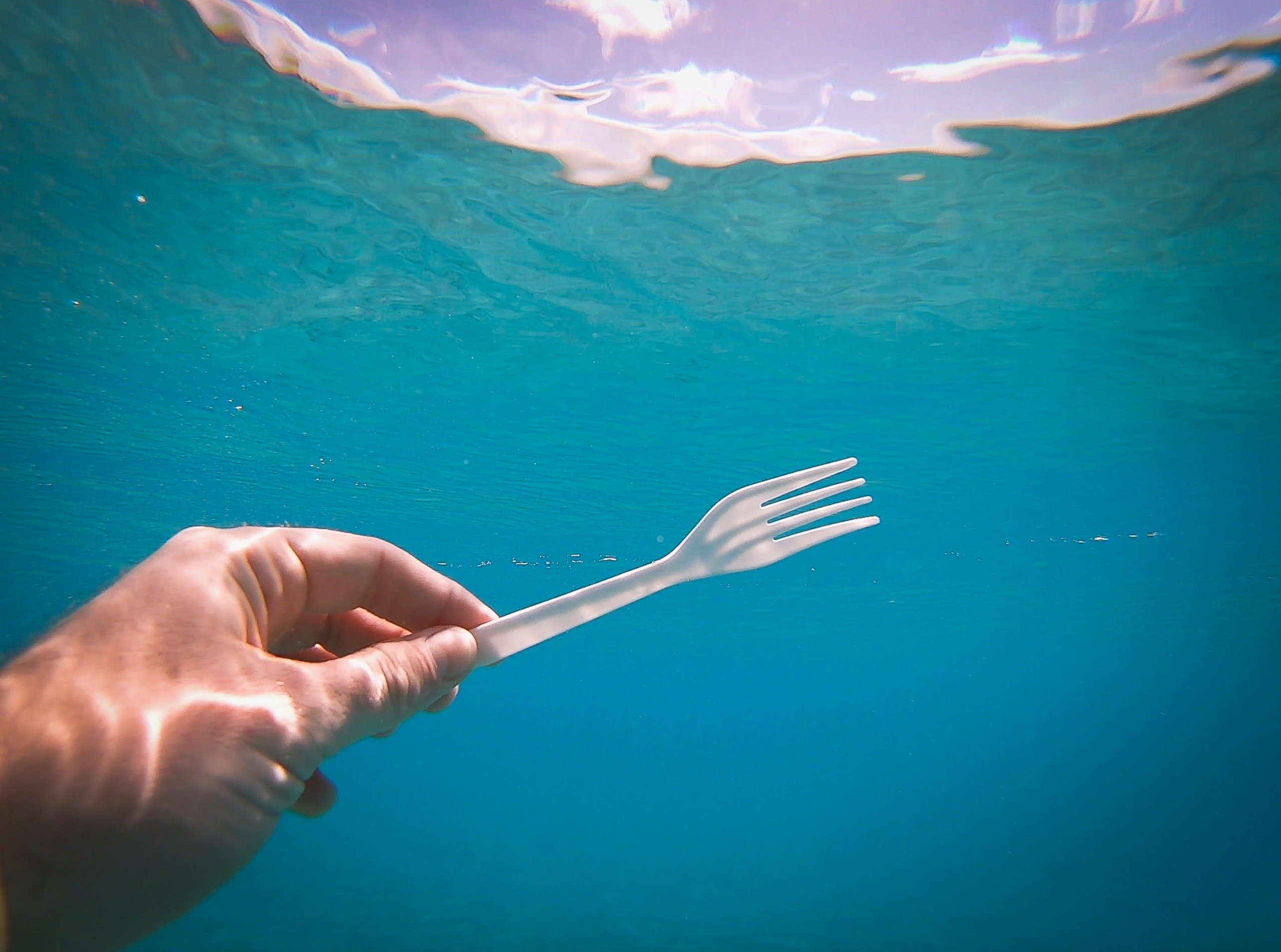 Plastic fork in water