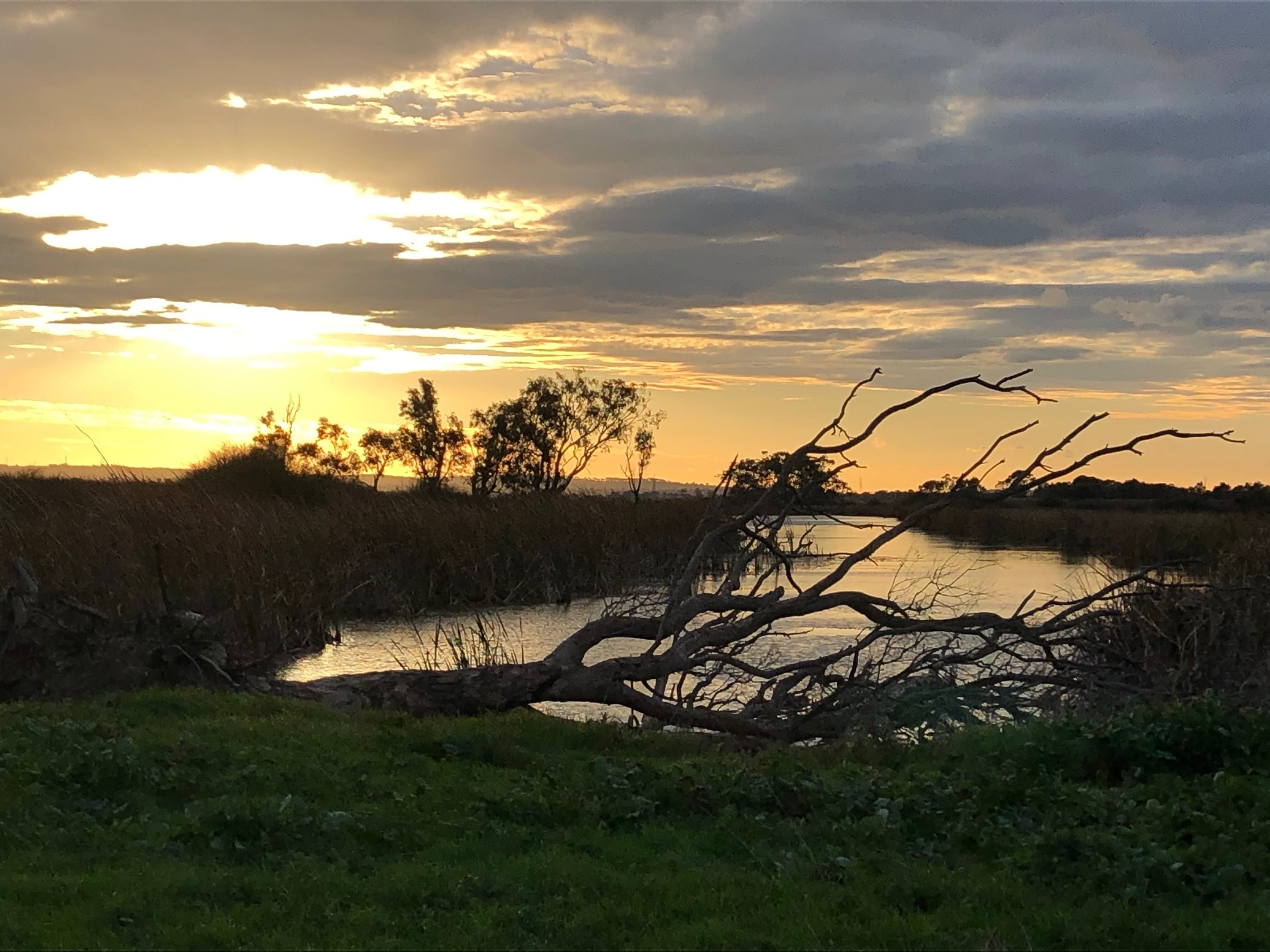 Sunset over the barge hole - Sparrovale
