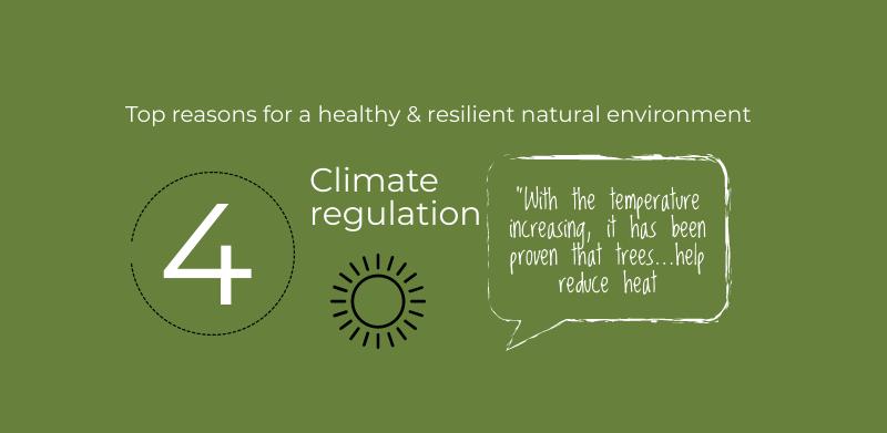 Natural Environment Policy feedback 4