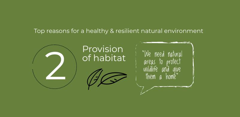 Natural Environment Policy feedback 2