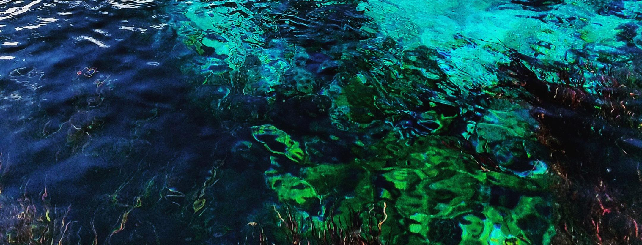 Te Waikoropupu springs close up