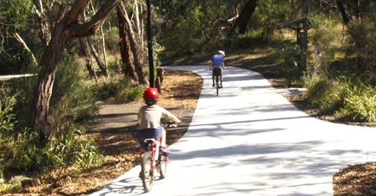 parent and child cycling