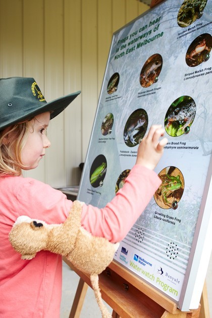 Student using the Frog board to discover Frog Calls from the North-East region