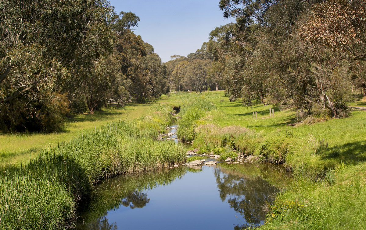 photo of a section of Dandenong Creek