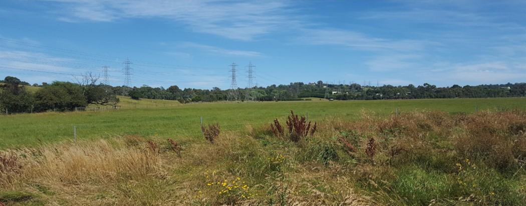 Image of Grasmere landscape open grasslands