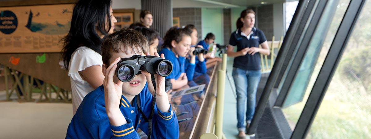 Students at the Edithvale-Seaford Wetland Education Centre