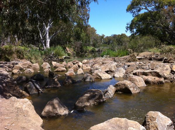 Werribee fish ladder