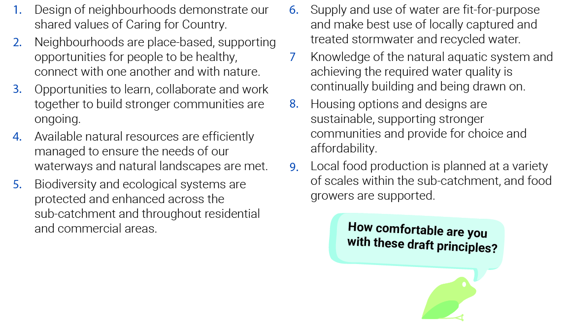Draft community principles image