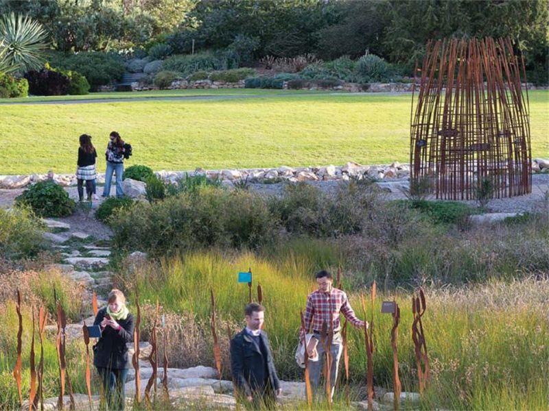 Water interaction - Adelaide Botanic Garden