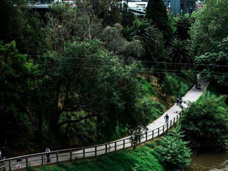 Path adjacent waterway