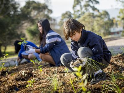 community planting day for World Water Day