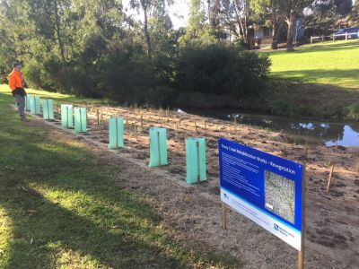 Image of stony creek rehabilitation planting
