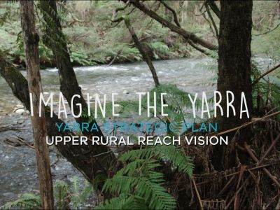 Video of Upper rural Yarra River Vision
