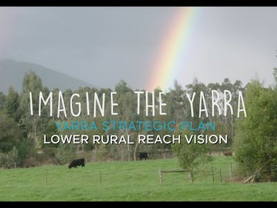 Video of Lower Rural Yarra River Vision