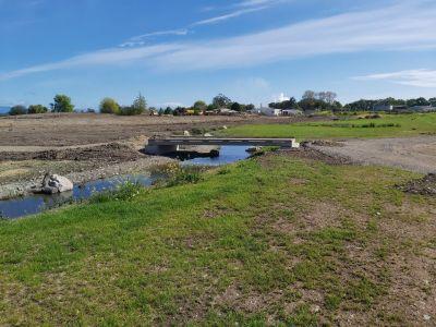 Borck Creek 5
