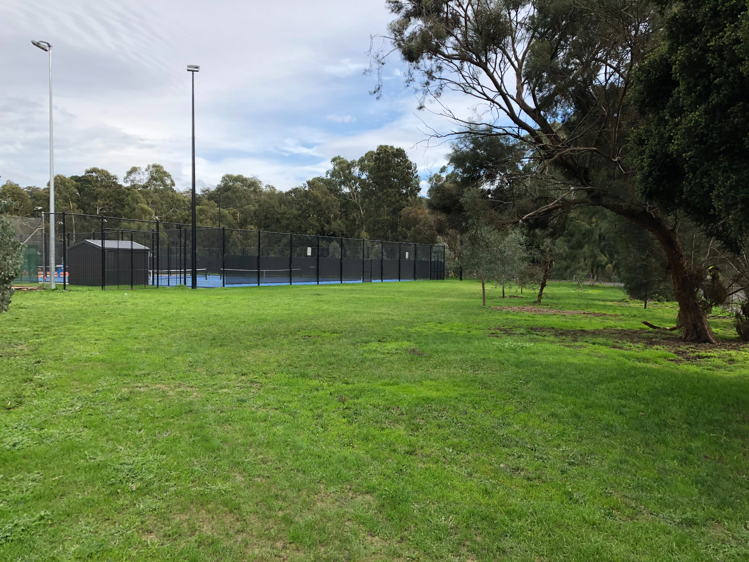 Image of the existing Andrew Park
