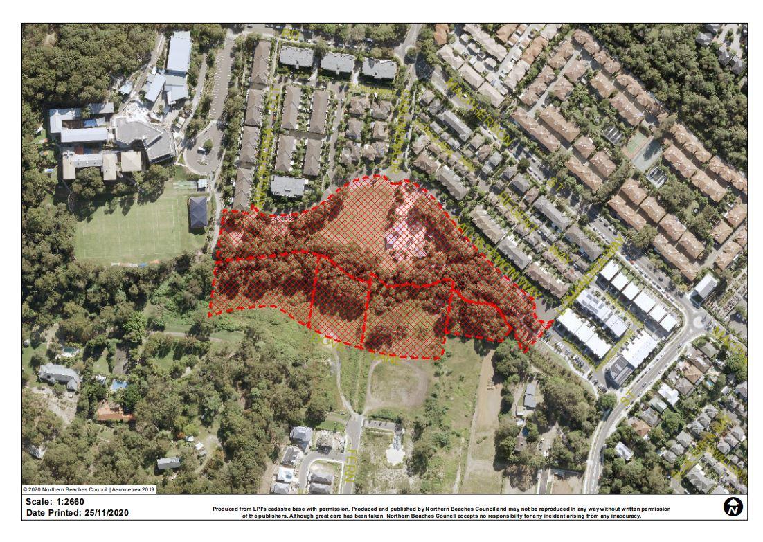Naming Proposal Lynne Czinner Park