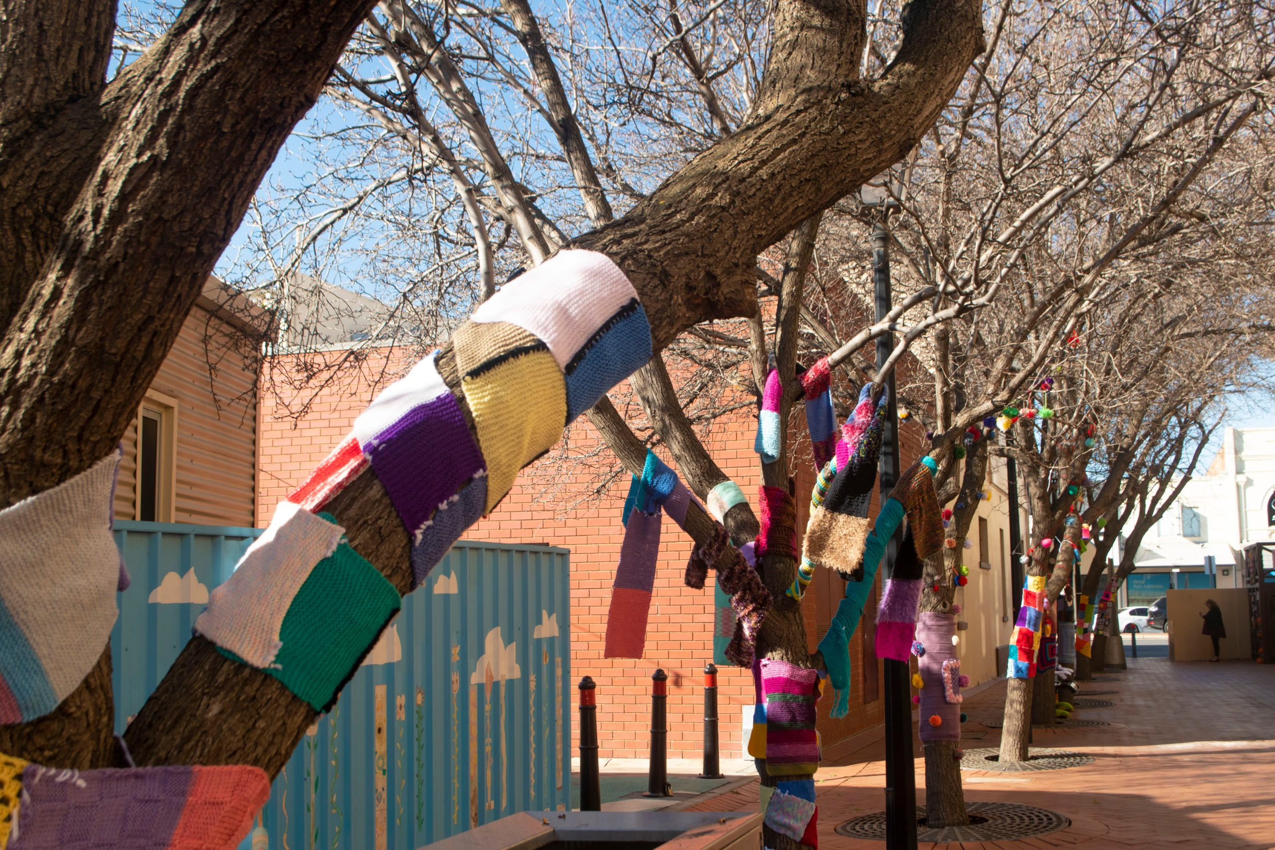Street trees with colourful yarn crocheted around the trunks.