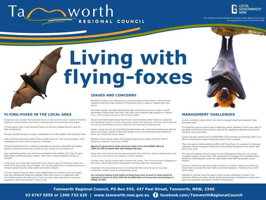 Living with flying-foxes signage