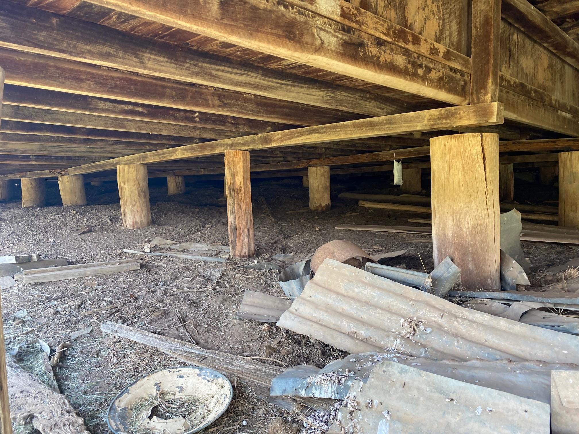 Underneath Weabonga Hall