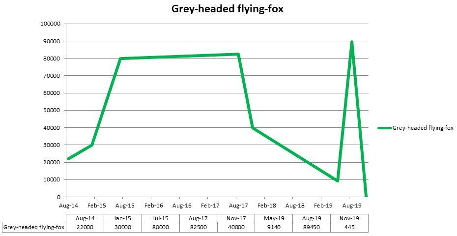 Flying Fox Stocktake
