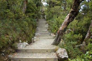 walking track steps