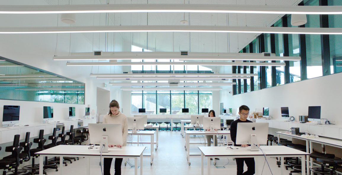 A computer laboratory depicts students using standing desks in the physiology dry laboratory.